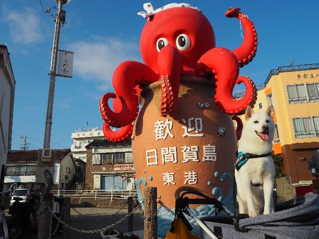 f:id:shiroi_okome:20210331205940j:image