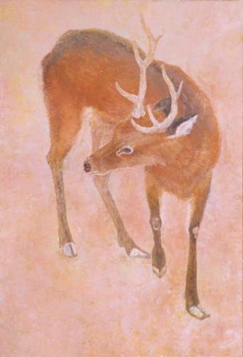 f:id:shiroki-maku:20190415001917p:plain