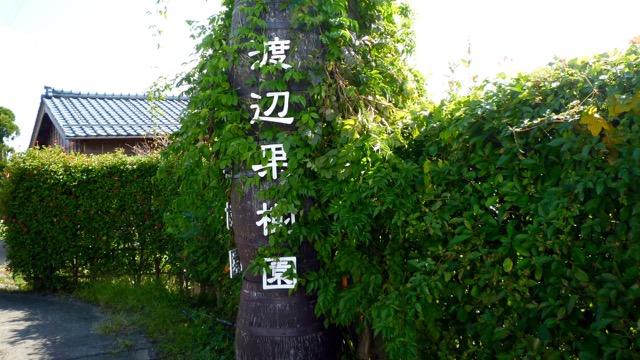 f:id:shirokiji:20170926095808j:plain