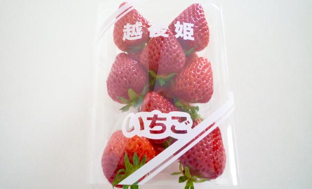 f:id:shirokiji:20180408173305j:plain