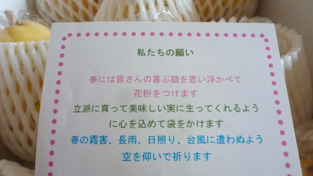 f:id:shirokiji:20181207072734j:plain