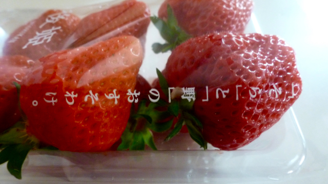 f:id:shirokiji:20190521063627j:plain