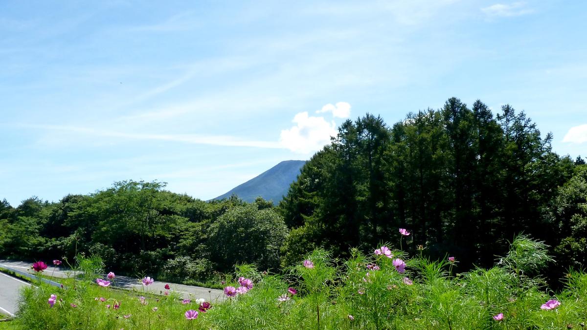 f:id:shirokiji:20190907084737j:plain