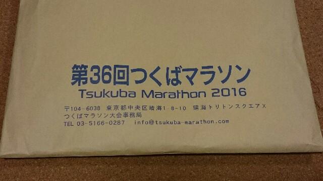 f:id:shirokuma-papa:20161118000349j:image