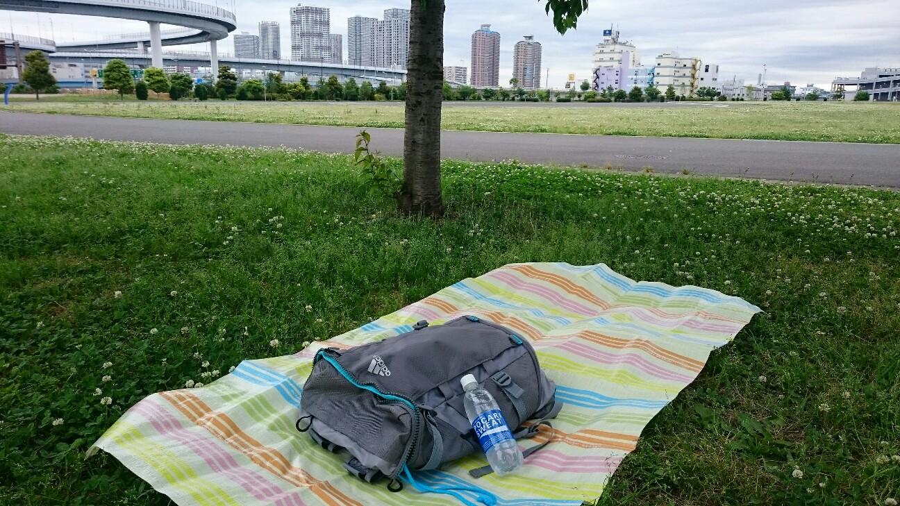 f:id:shirokuma-papa:20170528100915j:image