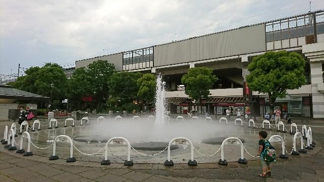 f:id:shirokuma-papa:20170611152203j:image