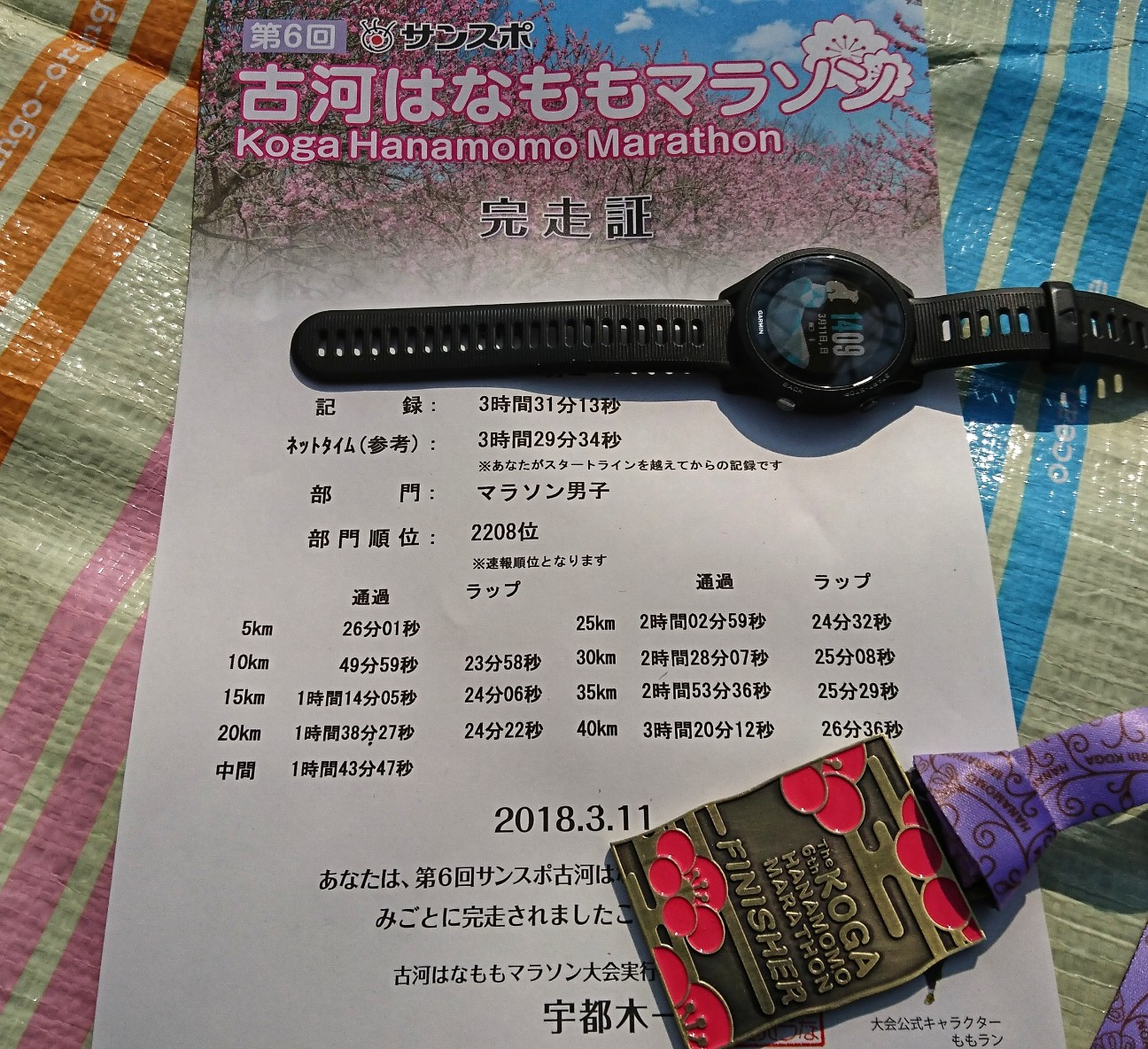 f:id:shirokuma-papa:20180311151042j:image