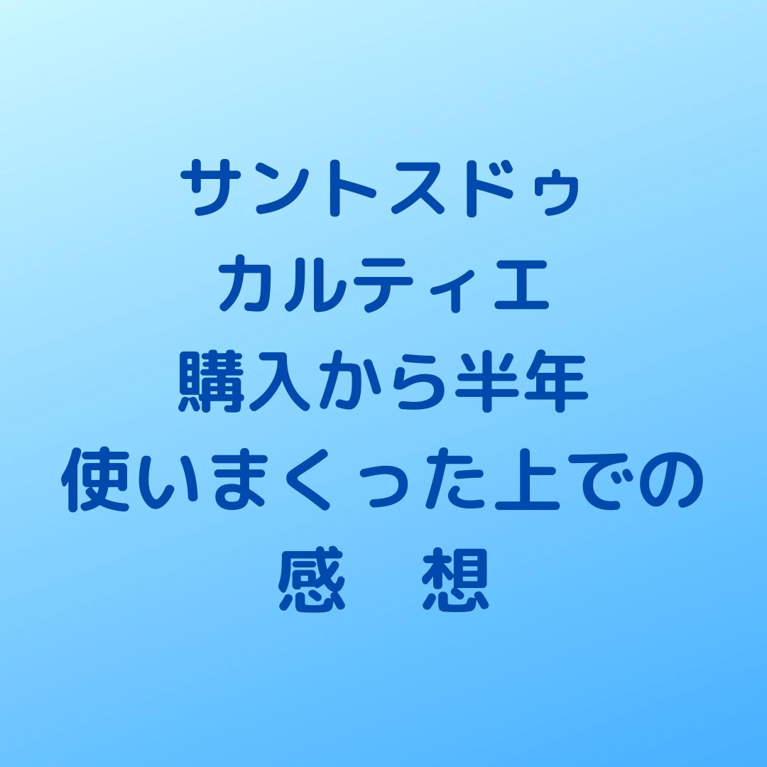 f:id:shirokuma-watch:20210529130539p:plain