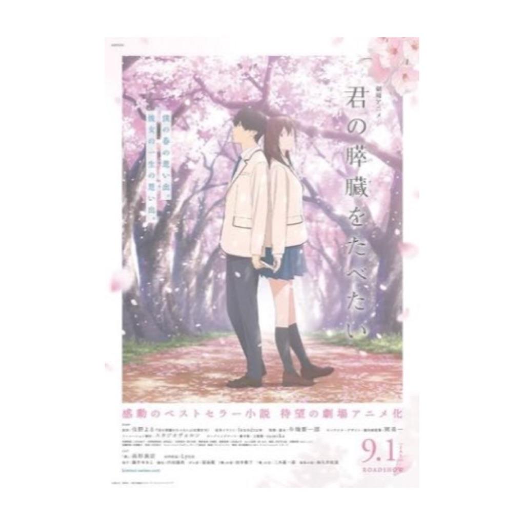 f:id:shirokuma-yu:20180904092520j:image