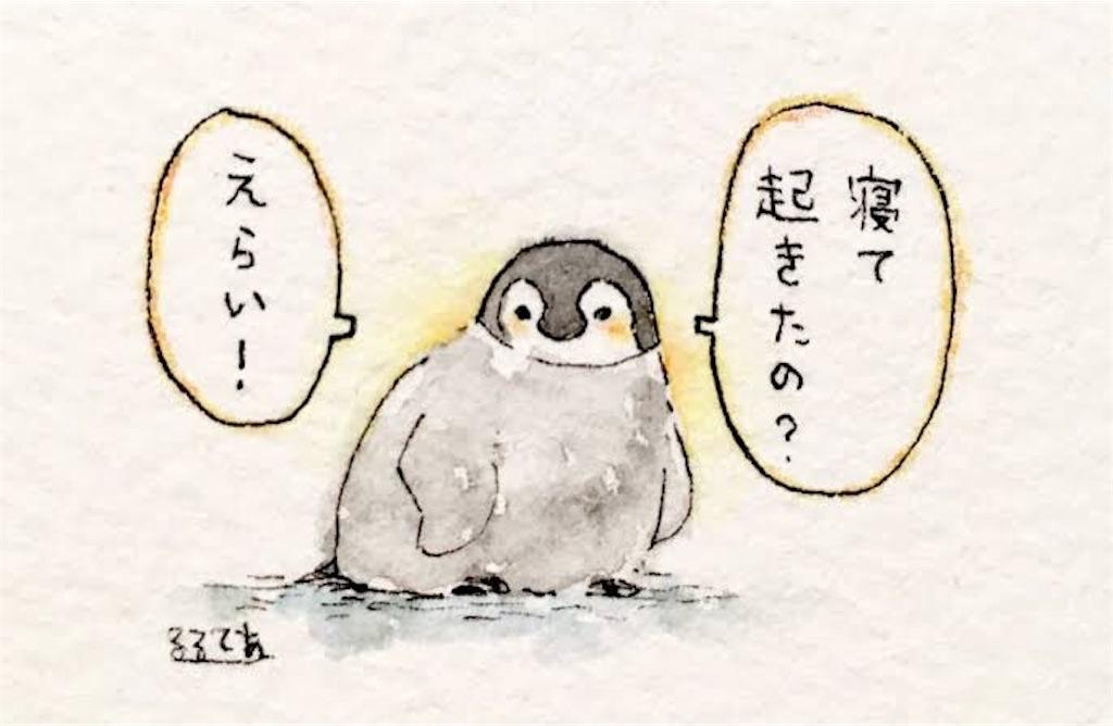 f:id:shirokuma-yu:20190417134915j:image