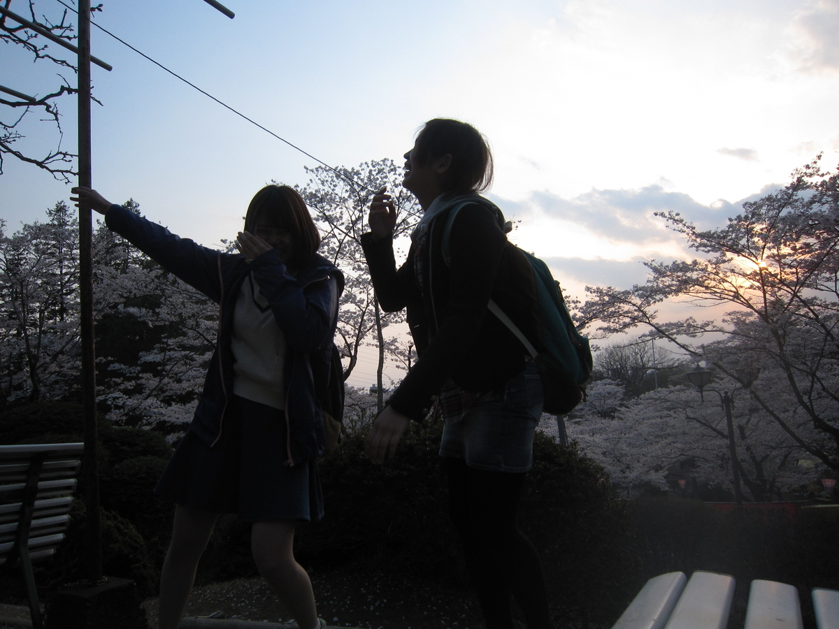 f:id:shirokuma-yu:20190828021109j:plain