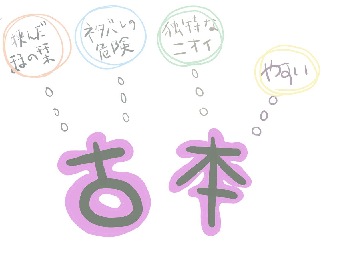 f:id:shirokuma-yu:20190831224558p:plain