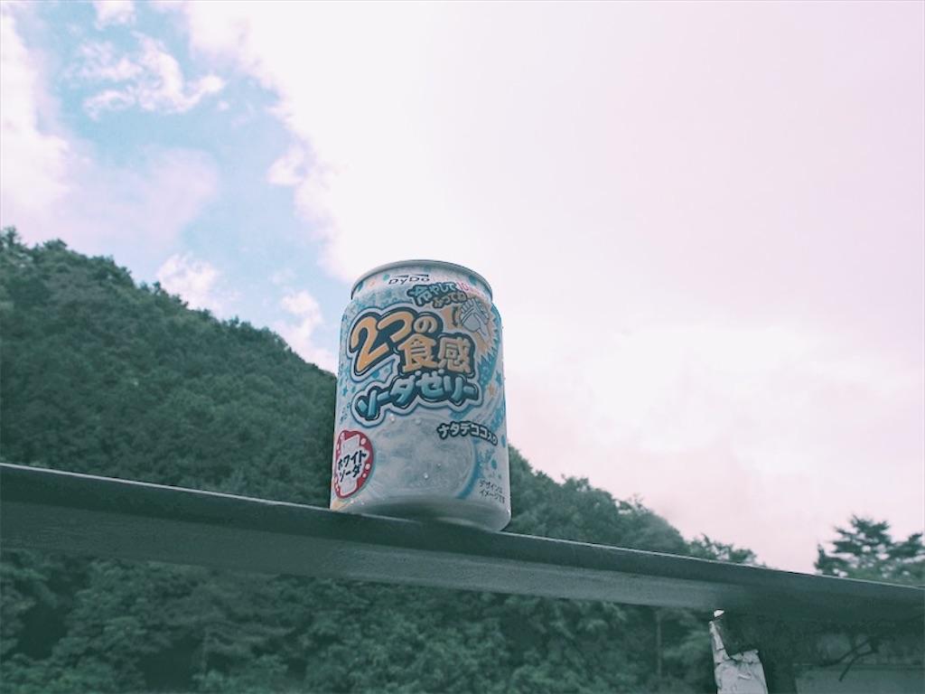 f:id:shirokuma0130:20180611222655j:image