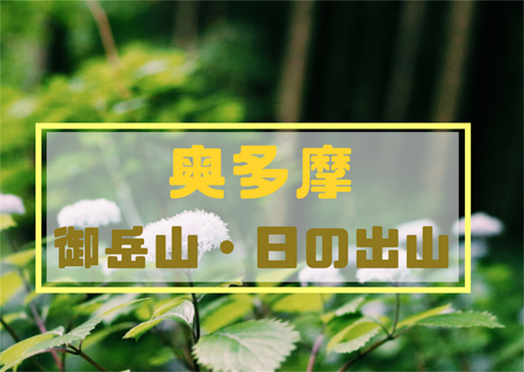 f:id:shirokuma0130:20180612193754p:image