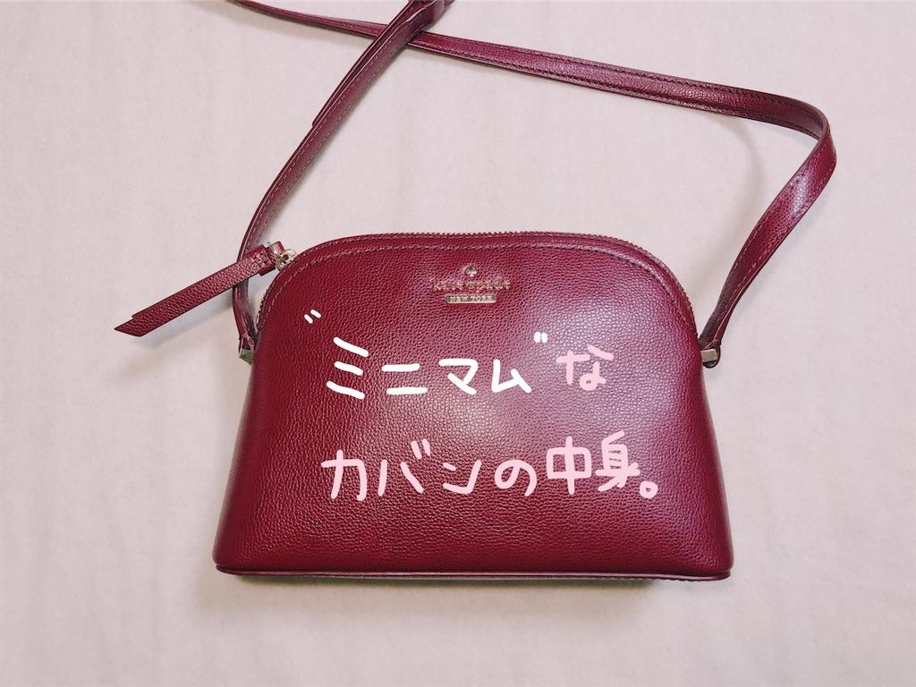 f:id:shirokuma0130:20190217222932j:image