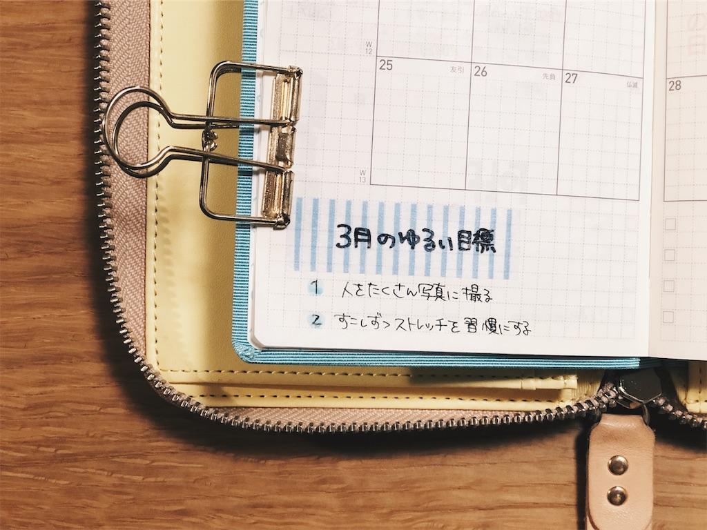f:id:shirokuma0130:20190309220703j:image
