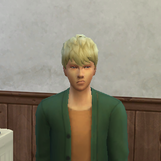 f:id:shirokumagirl:20200109075055p:plain