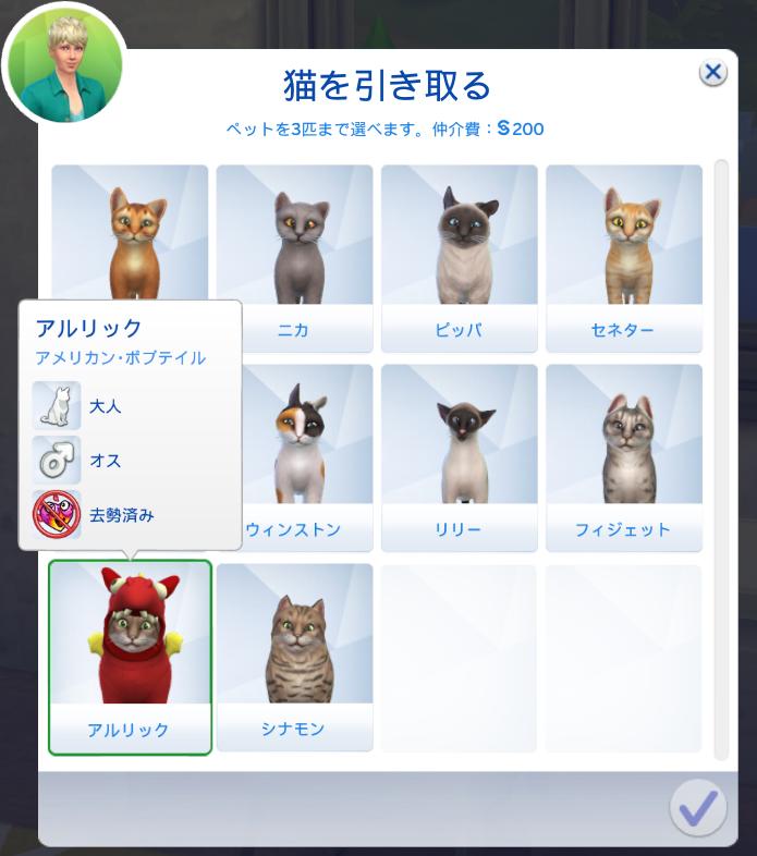 f:id:shirokumagirl:20200109164658p:plain