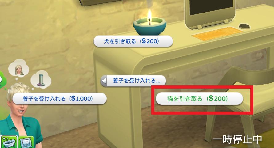 f:id:shirokumagirl:20200109170025p:plain
