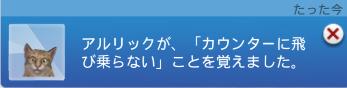 f:id:shirokumagirl:20200109232427p:plain