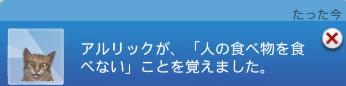 f:id:shirokumagirl:20200113154031p:plain