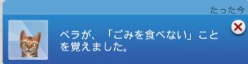 f:id:shirokumagirl:20200115233507p:plain