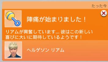 f:id:shirokumagirl:20200130165236p:plain