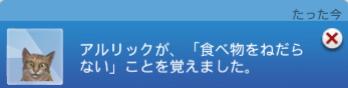 f:id:shirokumagirl:20200204233404p:plain