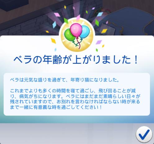 f:id:shirokumagirl:20200215221712p:plain