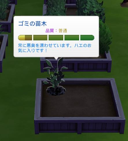 f:id:shirokumagirl:20200216000729p:plain