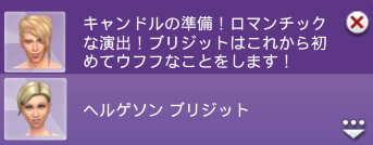 f:id:shirokumagirl:20200218234249p:plain