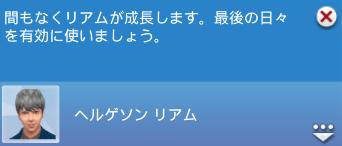 f:id:shirokumagirl:20200227233814p:plain
