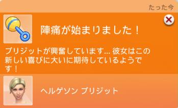 f:id:shirokumagirl:20200302005921p:plain