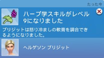 f:id:shirokumagirl:20200331013314p:plain