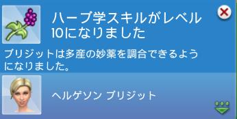 f:id:shirokumagirl:20200403114914p:plain