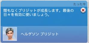 f:id:shirokumagirl:20200525115105p:plain