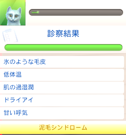 f:id:shirokumagirl:20200620021637p:plain