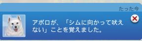 f:id:shirokumagirl:20200623113730p:plain
