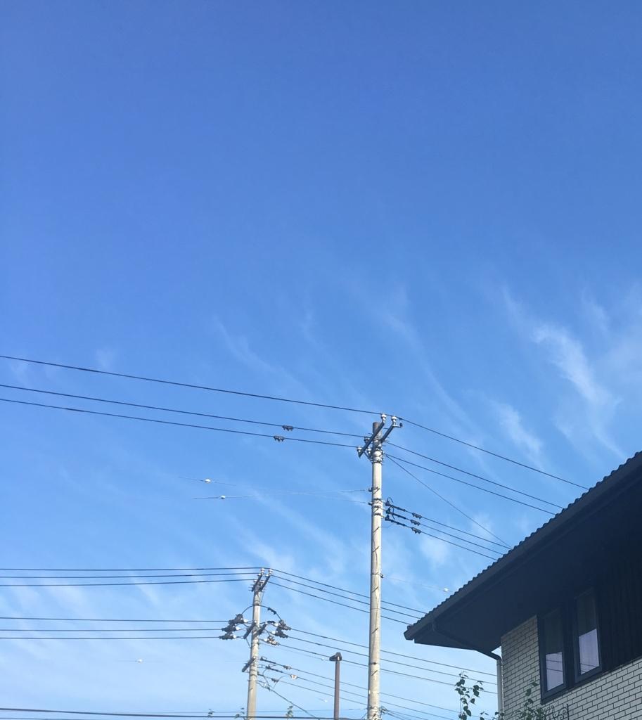 f:id:shirokumakko:20180718225854j:plain