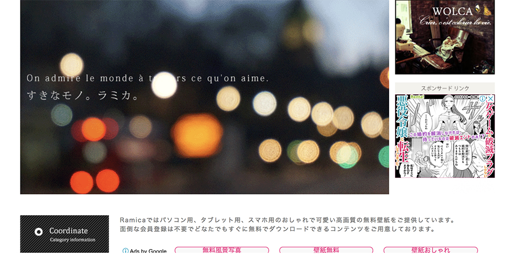 f:id:shirokumamelon:20190225230150j:plain