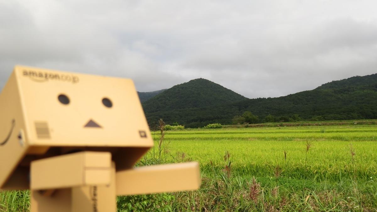 f:id:shirokumapanda:20181012014416j:plain