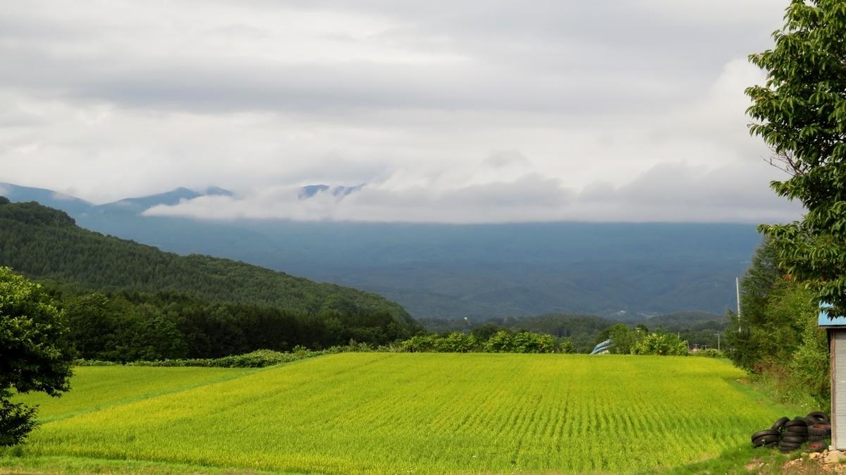 f:id:shirokumapanda:20181012014421j:plain