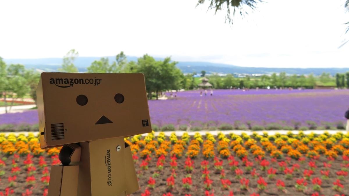 f:id:shirokumapanda:20181018014005j:plain