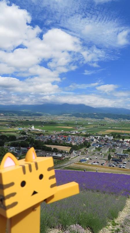 f:id:shirokumapanda:20181018225731j:plain