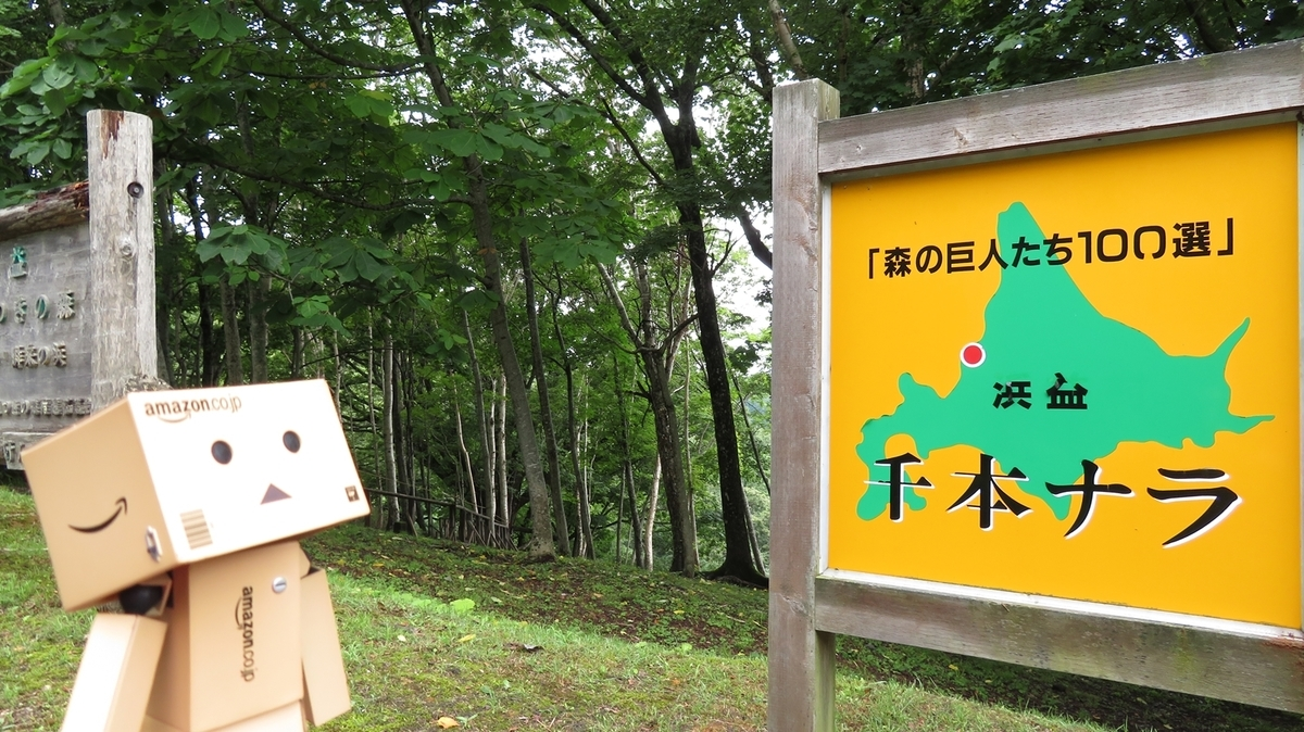 f:id:shirokumapanda:20190103230546j:plain