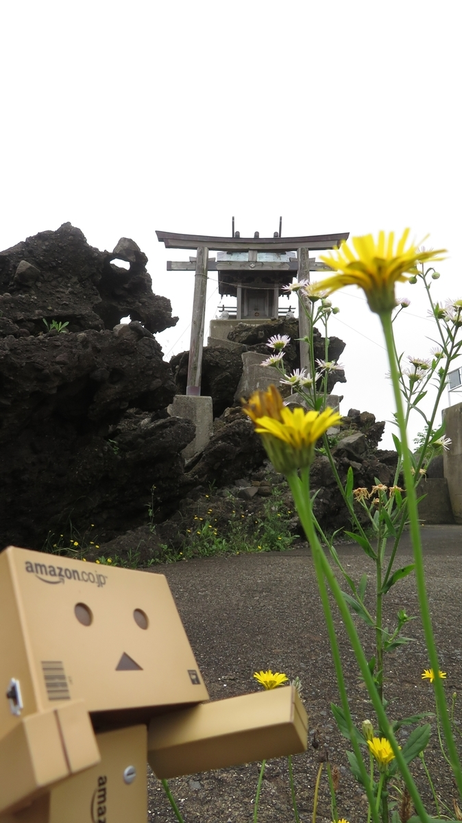 f:id:shirokumapanda:20190124213727j:plain