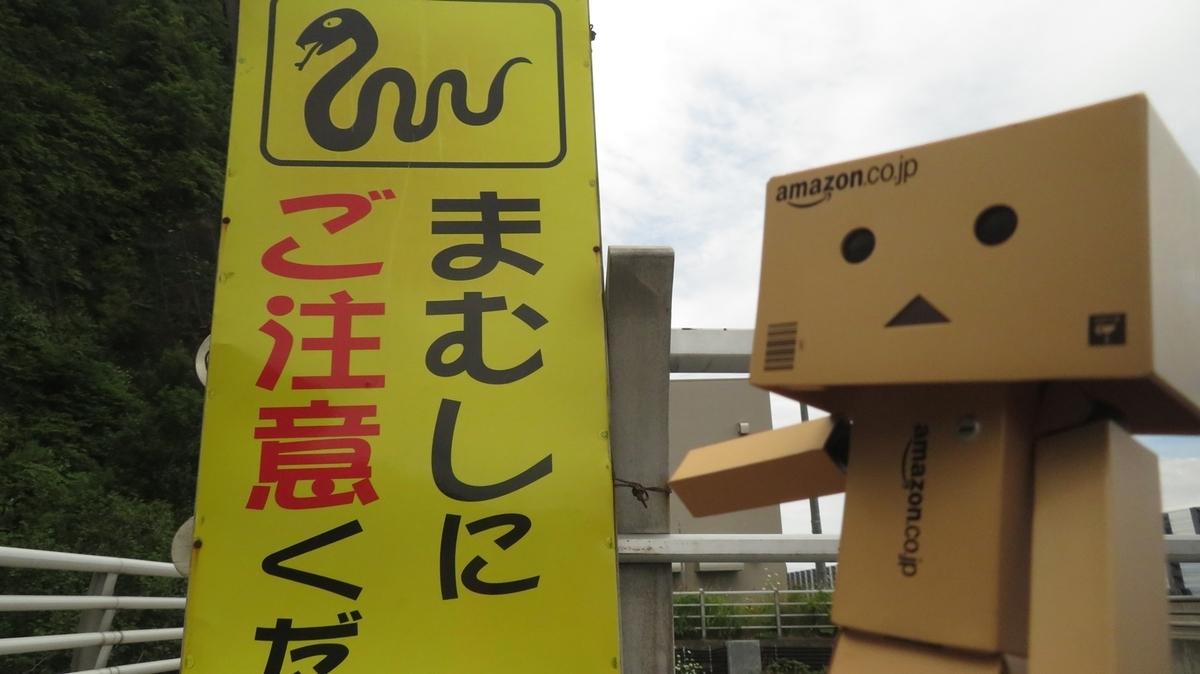 f:id:shirokumapanda:20190129224641j:plain