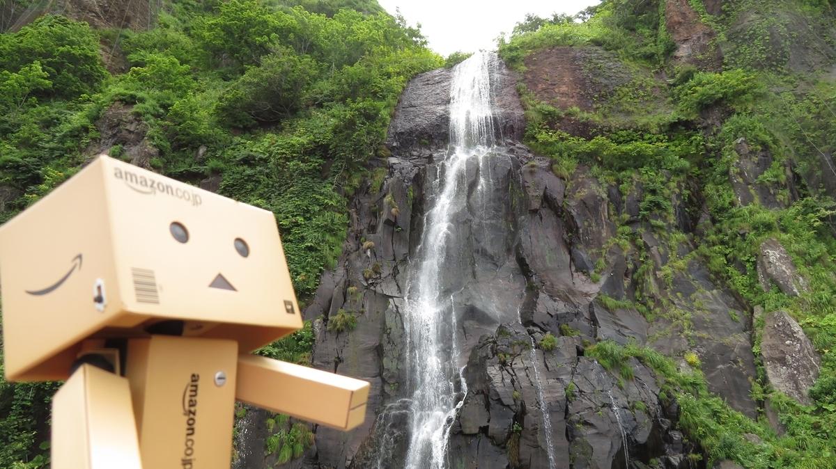 f:id:shirokumapanda:20190129224845j:plain