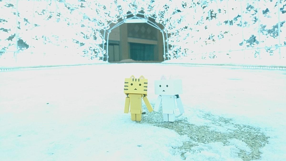 f:id:shirokumapanda:20190210223617j:plain