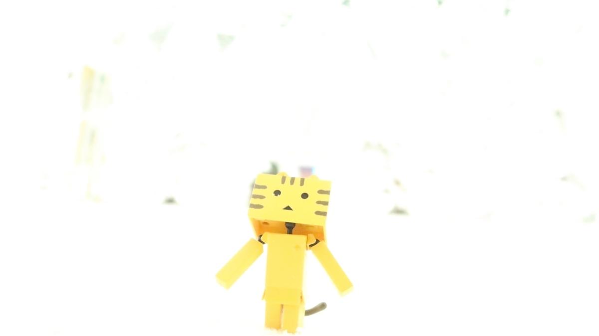 f:id:shirokumapanda:20190210223713j:plain